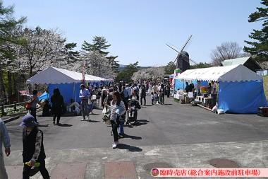 5月13日(日)軽米町:雪谷川フォリストパークで馬触れ合いイベント