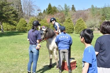 遠野ふるさと村 引き馬開催中