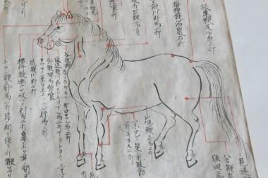 軍馬の郷六原資料館